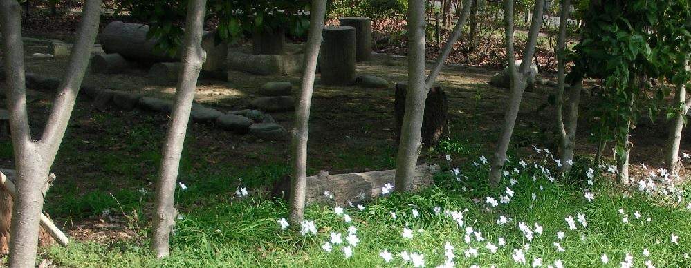 イエズス会無原罪聖母修道院(黙想)